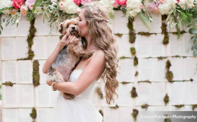 Bride holding her dog