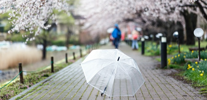 Umbrella in the middle of a rainy path