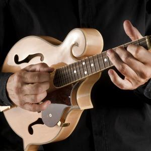 A bluegrass string quartet