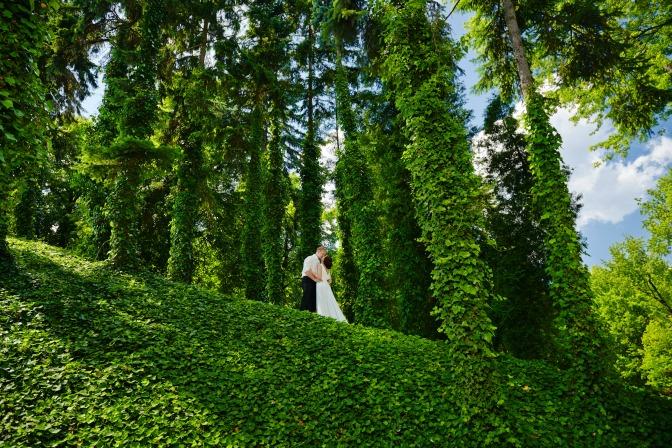 Unique wedding venue ideas for your wedding planning business
