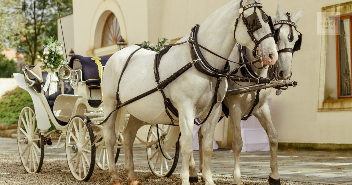 Offbeat event planner niche vendors and niche event businesses include horse carriage