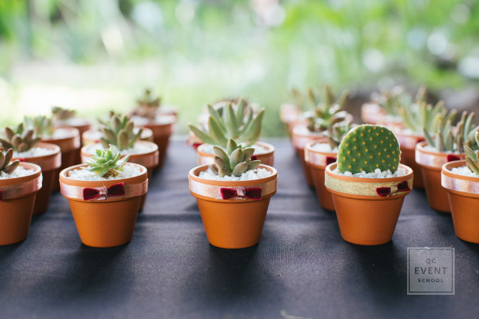 wedding favors - succulents are eco-friendly option for green wedding planning and event coordinator