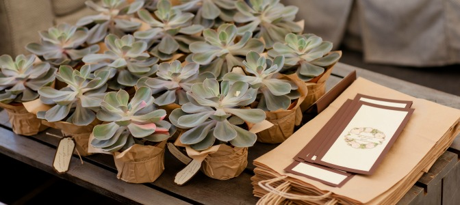 succulent place holders for wedding planners