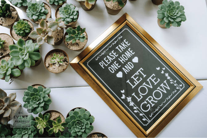 small potted plants as wedding favors, next to Let Love Grow sign