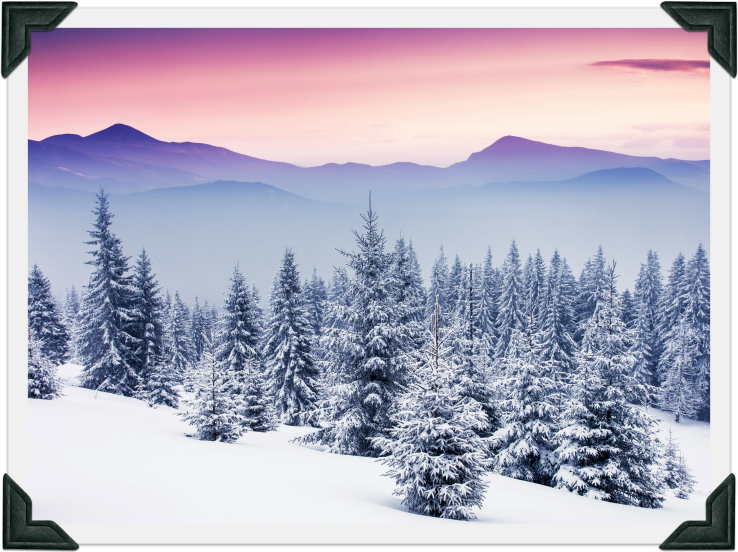 Winter Paradise - Photo
