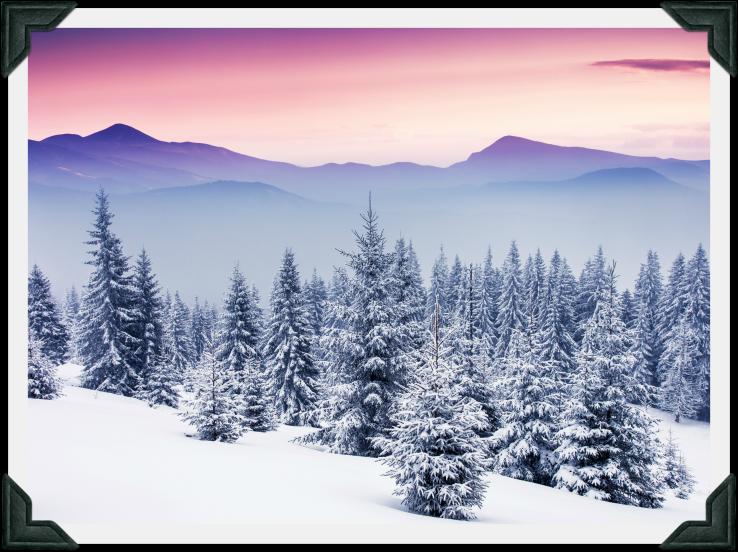 Winter Paradise—Photo